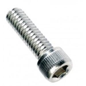 CHAMPION 3 16IN X 1 2IN BSW SOCKET CAP SCREWS 316 A4 - 10PK