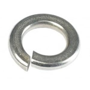 CHAMPION 1 4IN STAINLESS SPRING WASHERS 304 A2 - 50PK